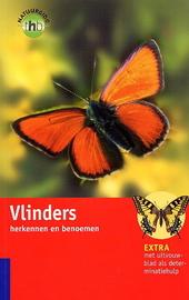 Vlinders herkennen en benoemen