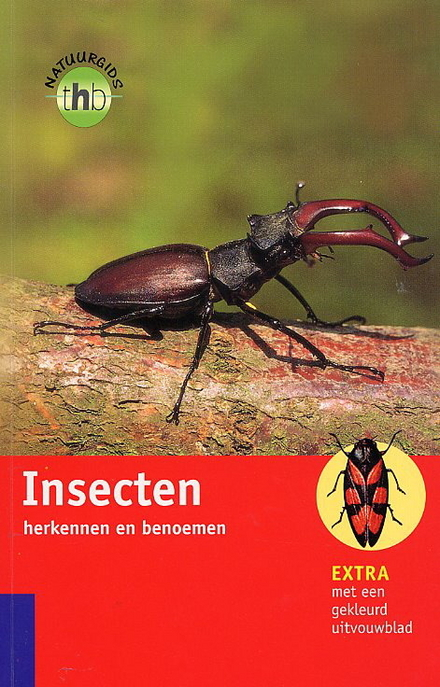 Insecten (zonder vlinders) herkennen en benoemen