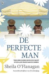 De perfecte man