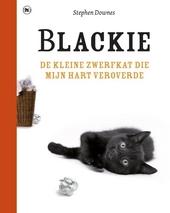 Blackie : de kleine zwerfkat die mijn hart veroverde