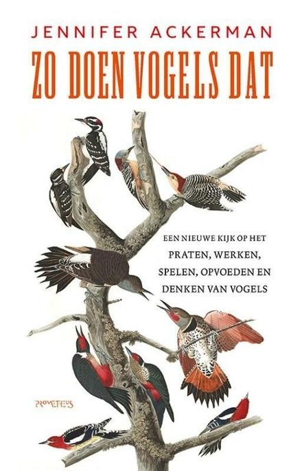 Zo doen vogels dat : een nieuwe kijk op het praten, werken, spelen, opvoeden en denken van vogels