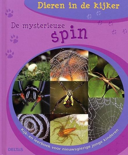 De mysterieuze spin die een web maakt