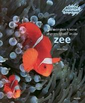 Zo worden kleine dieren groot in de zee