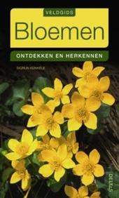 Bloemen : ontdekken en herkennen