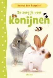 Zo zorg je voor konijnen