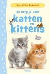 Zo zorg je voor katten en kittens