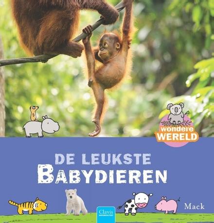 De leukste babydieren