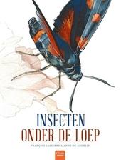 Insecten onder de loep