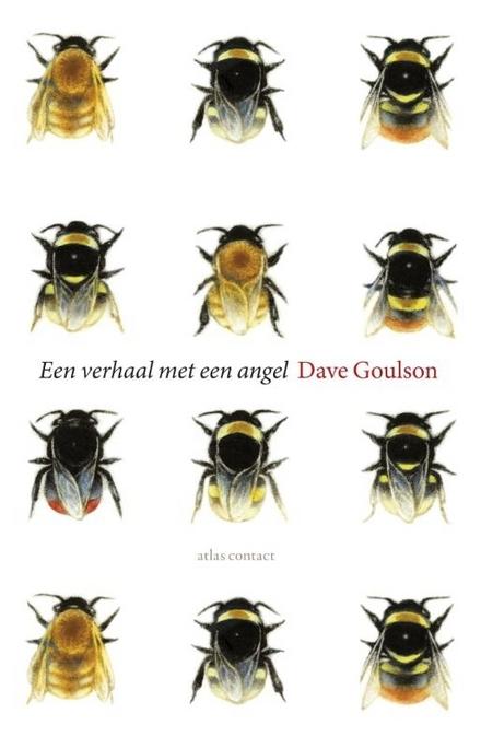 Een verhaal met een angel - Hoezo lees je een boek over hommels?