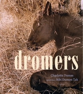 Dromers