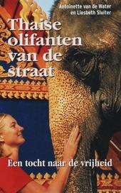 Thaise olifanten van de straat : een tocht naar de vrijheid