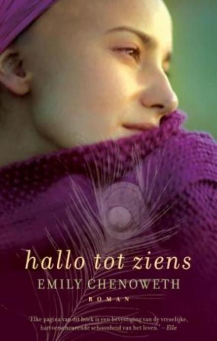 Hallo tot ziens : roman