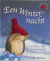 Een winternacht