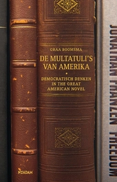De Multatuli's van Amerika : democratisch denken in the great american novel