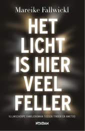Het licht is hier veel feller : roman