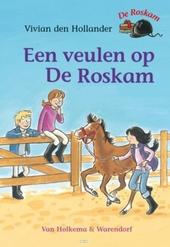 Een veulen op De Roskam