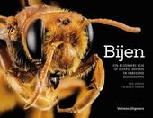 Bijen : een bijzondere kijk op diverse bekende en onbekende bijensoorten