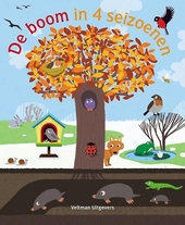De boom in 4 seizoenen