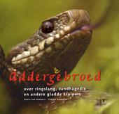 Addergebroed : over ringslang, zandhagedis en andere gladde kruipers