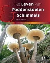 Het leven van paddenstoelen & schimmels