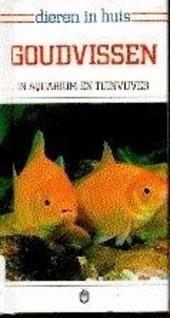 Goudvissen in aquarium en tuinvijver