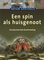 Een spin als huisgenoot : een fascinerende kennismaking