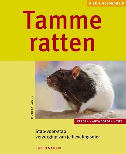Ratten : tevreden en gezond