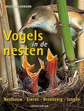 Vogels in de nesten : nestbouw, eieren, jongen, broedzorg