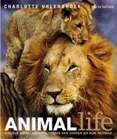 Animal life : visuele wereldencyclopedie van dieren en hun gedrag