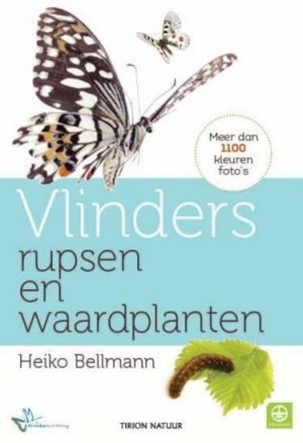 Vlinders, rupsen en waardplanten