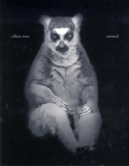 Elliot Ross : Animal