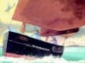 De kleine scheepjes : de heldhaftige redding bij Duinkerken in de Tweede Wereldoorlog