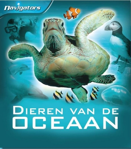 Zeeën en oceanen