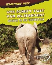 Wie schept poep van olifanten? : werken in een dierentuin