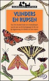 Vlinders en rupsen