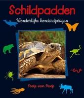 Schildpadden : wonderlijke honderdjarigen