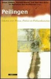 Peilingen : teksten over proza, poëzie en podiumkunsten
