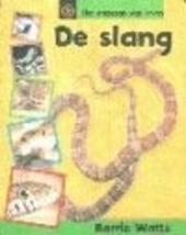 De slang