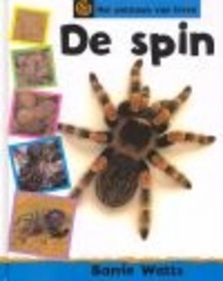 De spin