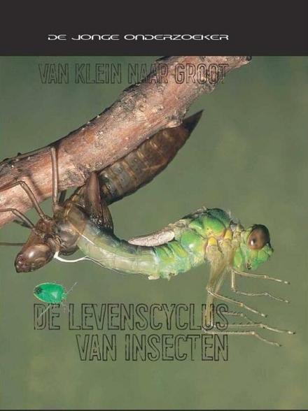 De levenscyclus van insecten