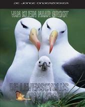 De levenscyclus van vogels