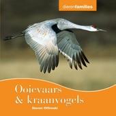 Ooievaars & kraanvogels