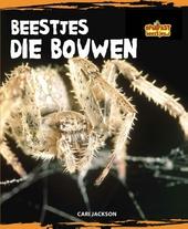 Beestjes die bouwen