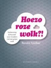 Hoezo roze wolk?! : herkenning & houvast voor moeders met een grijze wolk