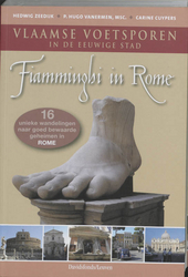 Fiamminghi in Rome : Vlaamse voetsporen in de eeuwige stad