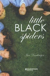 Little black spiders