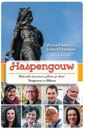 Haspengouw : bekende inwoners gidsen je door Tongeren en Bilzen