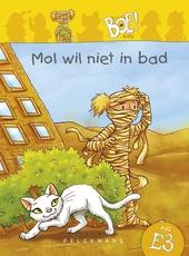 Nes is vies