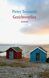 Gezichtsverlies : roman