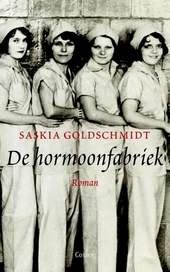 De hormoonfabriek : roman